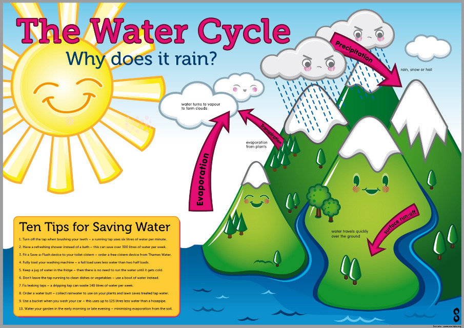Water_FINAL-web copy_905.jpg (905×640) | educational poster ...